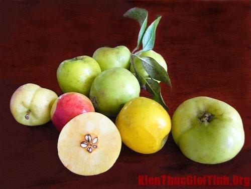 Cách làm giấm táo làm đẹp, giảm cân theo công thức độc đáo