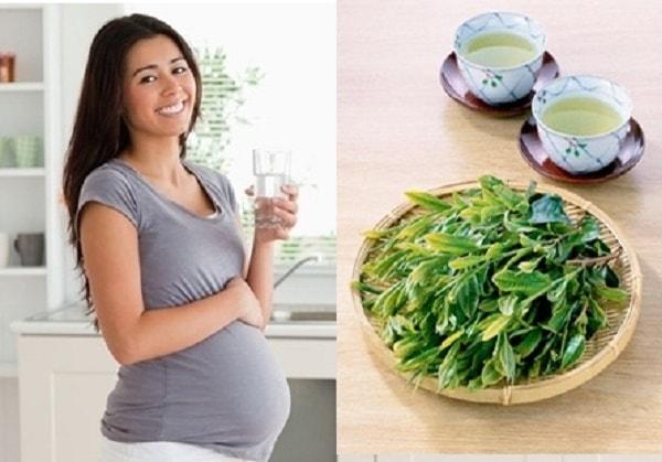 Mẹ bầu uống nước vối đúng cách sẽ rất tốt cho cơ thể