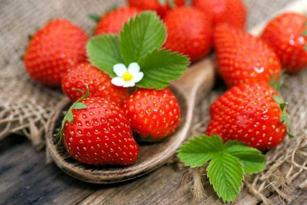 Mùa đông nên ăn và nên tránh những loại trái cây nào 3
