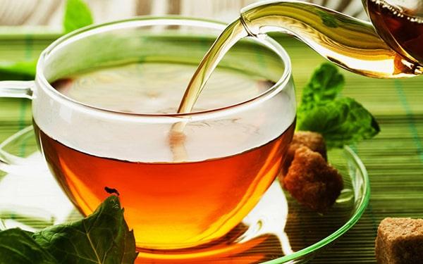 Uống lá vối tốt cho người bị bệnh viêm đại tràng