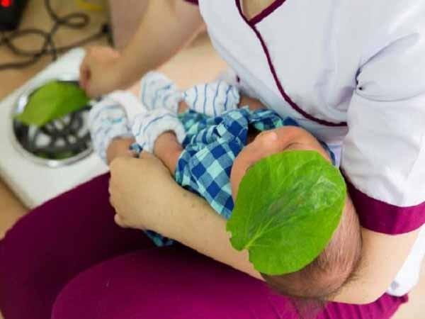 tác dụng của lá trầu không với trẻ sơ sinh 1