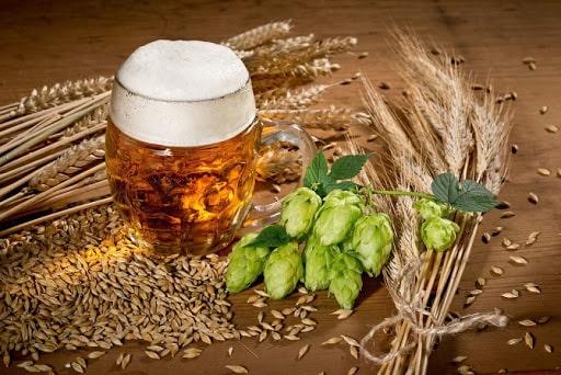 Trong bia thủ công có những thành phần gì