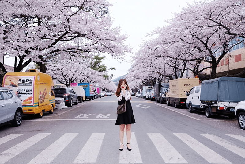 Du học Hàn Quốc đang rất phát triển những năm gần đây