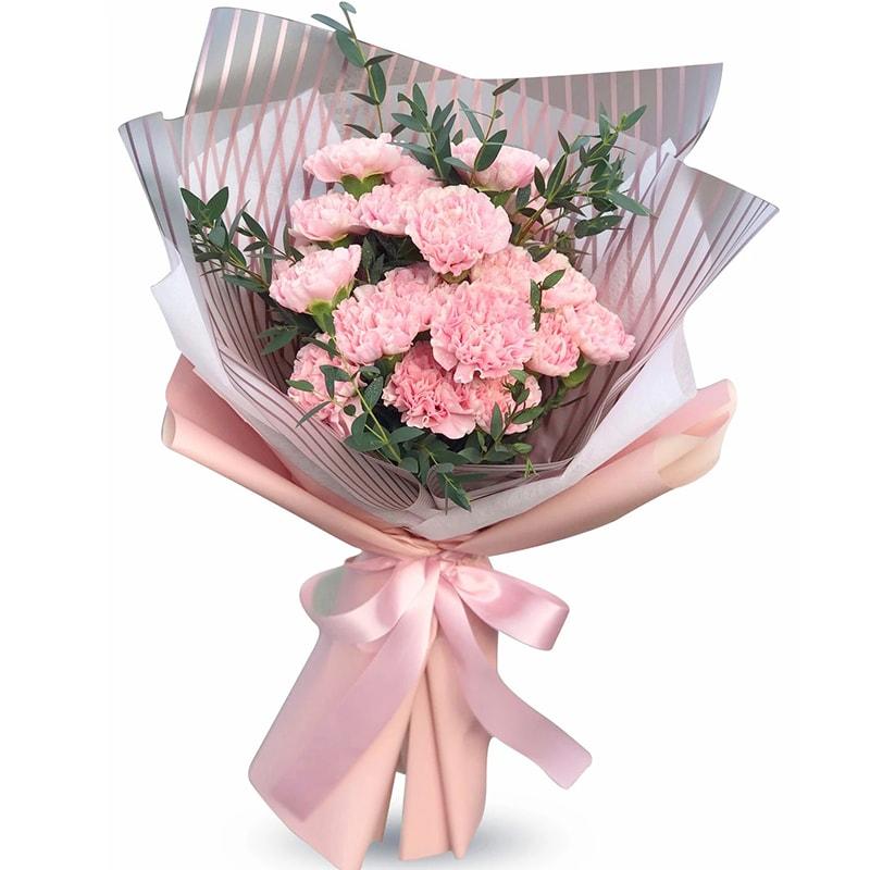 Sinh nhật chị gái bạn có thể tặng hoa cẩm chướng